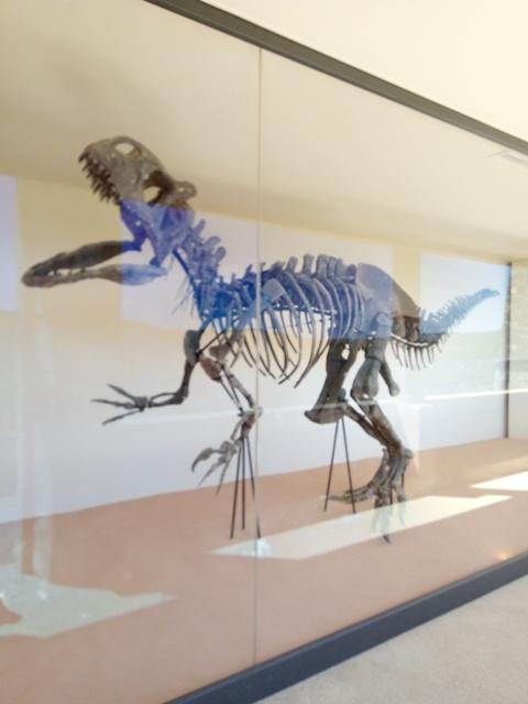 au temps des dinosaures T-Rex